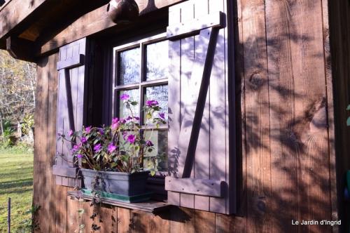 train,nid frelons,couleur jardin 037.JPG