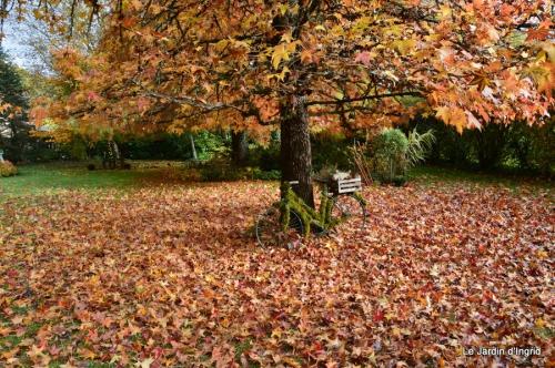travaux,érable rouge,abeilles,Monpazier,jardin 024.JPG