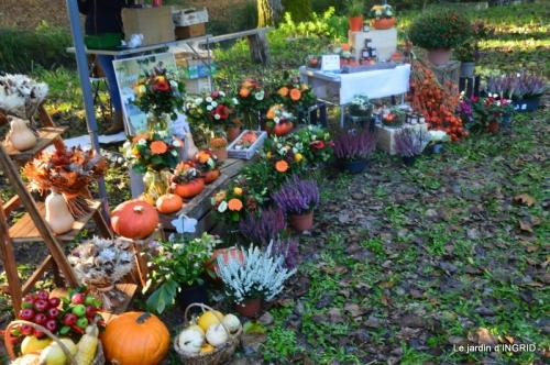 Issigeac,citrouilles ,rhus,automne,jardin 015.JPG