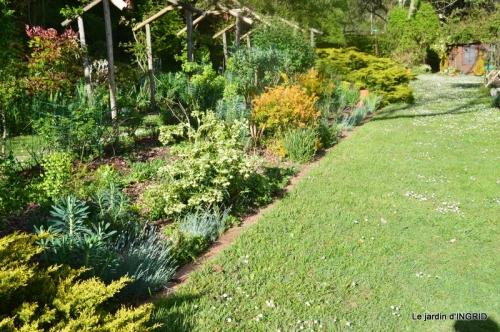cygnes,cartes,scènes de jardin,;rosier de Banks 013.JPG