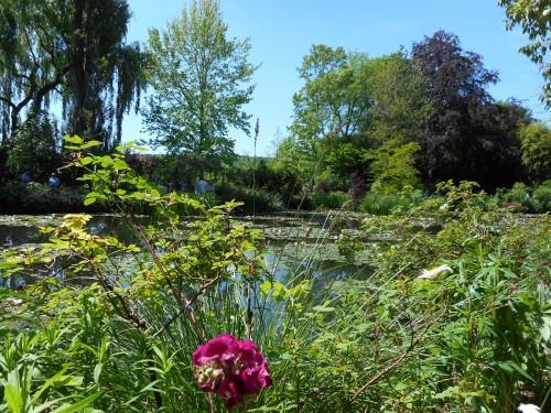 Normandie,jardin Monet,baie de Somme,chez Marylaur 215.JPG