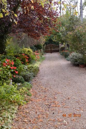 champignons,citrouilles,st Mayme de Péreyrol,fuschias,jardin aut 149.JPG