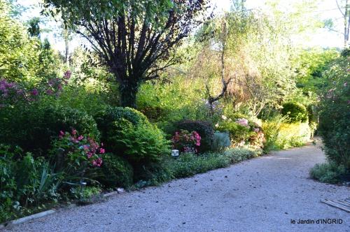 jardin,arrosage,pourpre,bouquet 052.JPG