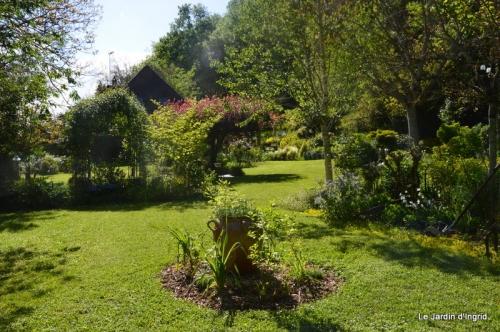 jardin avril et mai, 118.JPG