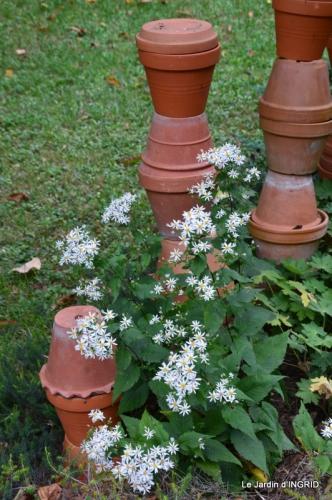 jardin ,bouquet 049.JPG