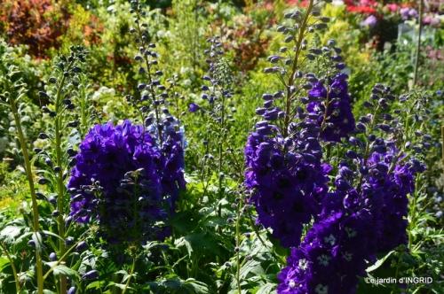 muguet,féte des fleurs Lalinde,jardin 077.JPG