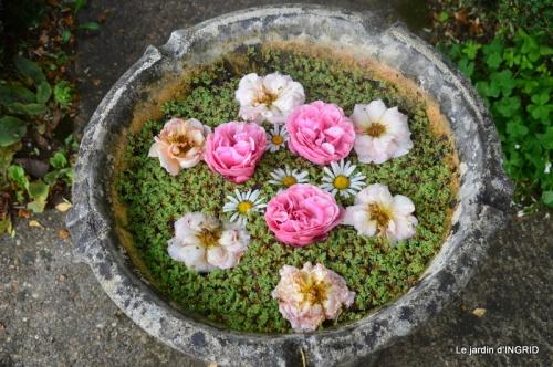 épouvantails,cygnes,jardin,bouquet fête des pères 081.JPG