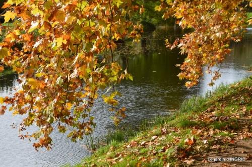 canal automne ,jardin,Ines 128.jpg