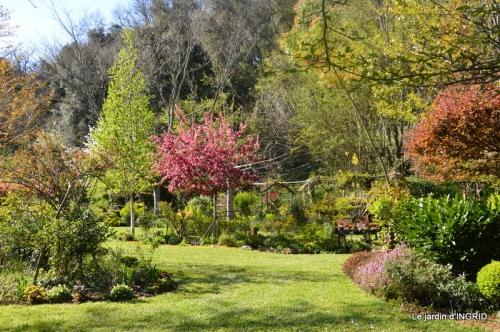 jardin confiné ,osier,magnolia jaune 135.JPG
