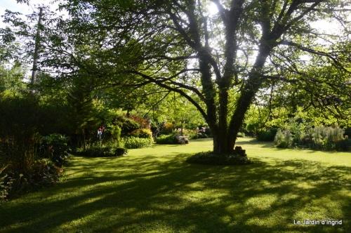 en juin jardin 170.JPG