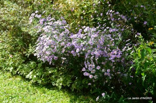 jardin pour l'automne,affiche vide jardin 086.JPG