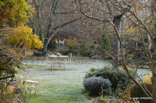 composition,kakis,jardin givré,asclépias,lalinde 056.JPG