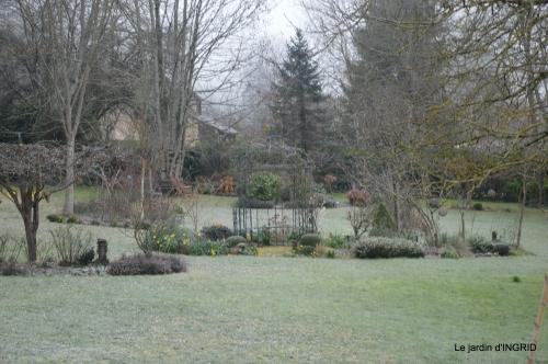 première gelée,compositions florales à garder,jardin 103.JPG