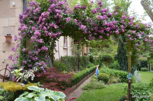 tour du jardin en juin 030.JPG