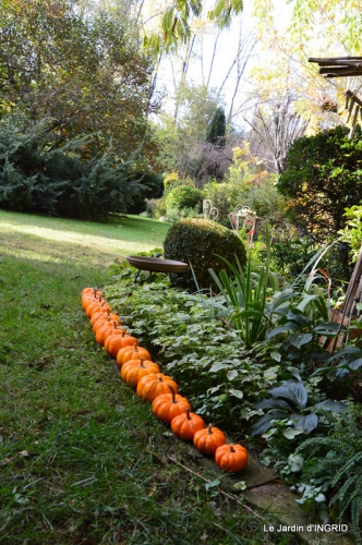 automne, décos cucurbitacées,jardin 024.JPG