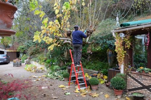 Romefort,bord de Creuse,vent,feuilles,jardin,canal 120.JPG