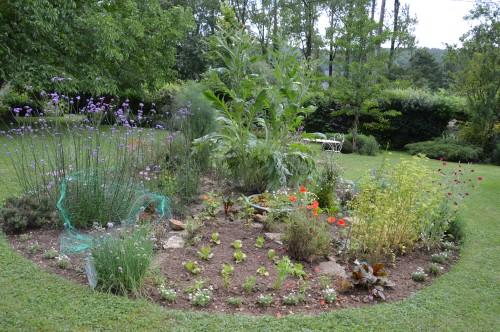 jardin,potager,roses,sauges 121.JPG