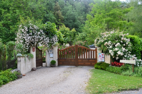 roses,visiteuses,Sophie 035.JPG