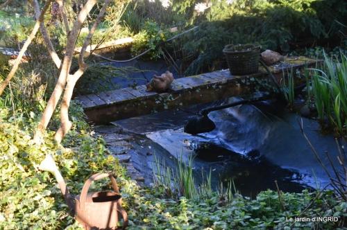 semis,bassin,tour du jardin 100.JPG