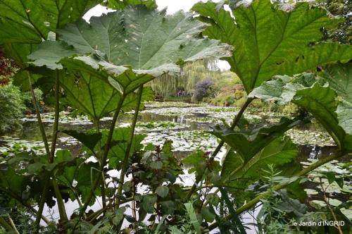 bouquet,jardin de Monet,les vaches,Pourville sur mer 096.JPG