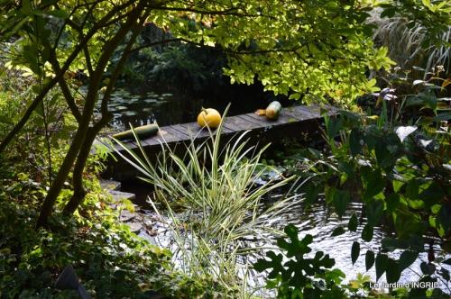 automne, décos cucurbitacées,jardin 025.JPG