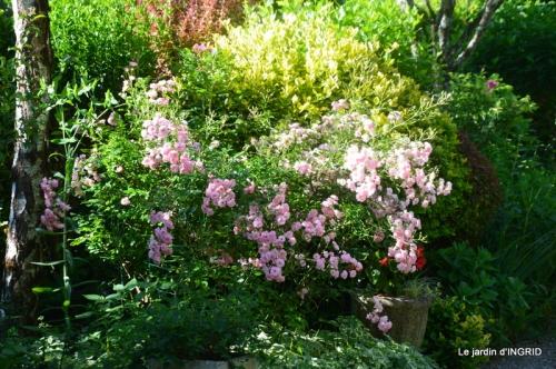 jardin fin mai,les filles 003.JPG