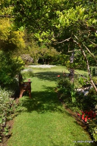 jardin avril et mai, 105.JPG