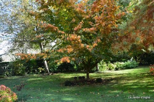 anniversaire Mamy,chateau d'eau,jardin automne 077.JPG