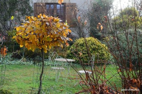 fin de l'automne,Lalinde,bouquet de l'avent 105.JPG