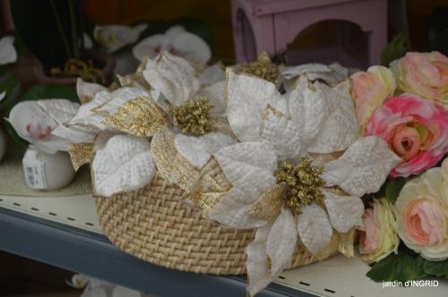 Noel jardiland,frelons,serre,feuilles 047.JPG