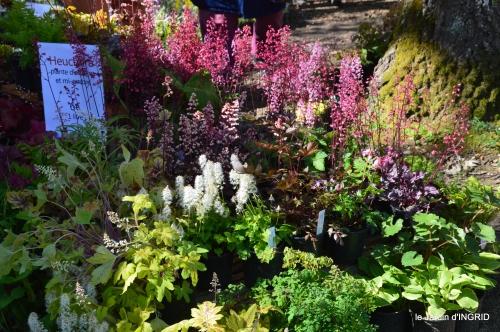 coquelicots,fête des fleurs Lalinde,fouleix,jardinage 102.JPG