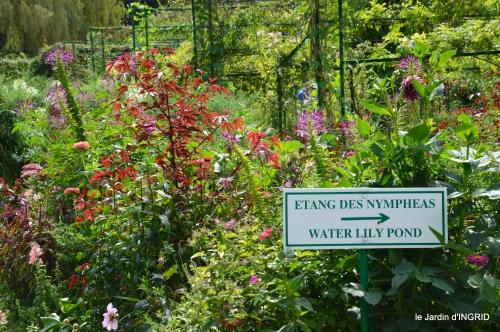 bouquet,jardin de Monet,les vaches,Pourville sur mer 038.JPG