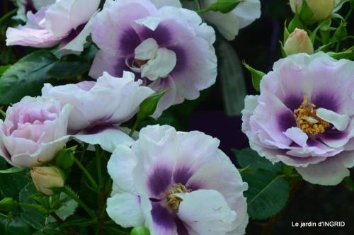 muguet,féte des fleurs Lalinde,jardin 103.JPG