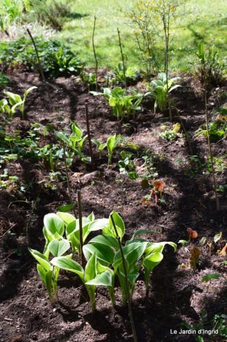 mésanges,escargots,ros. de banks,abeilles,Monpazier,Banes,Forêt 139.JPG