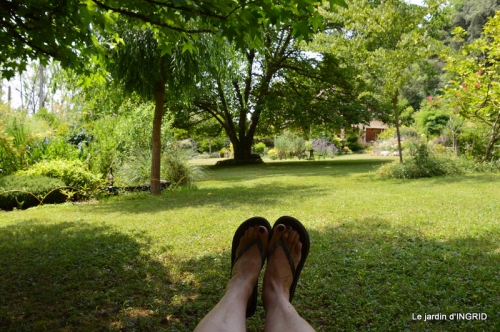 robe Julie,jardin,le flambé,lantanas,dahlias 090.JPG