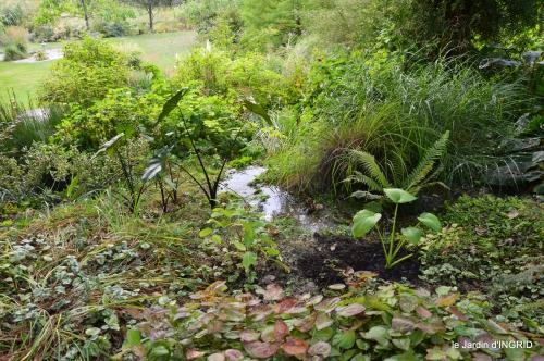 canal,au fond de l'Or,Julie,feuilles 087.JPG