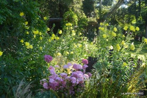 hémérocalles,les filles,les cygnes,la passerelle,moi,jardin 076.JPG
