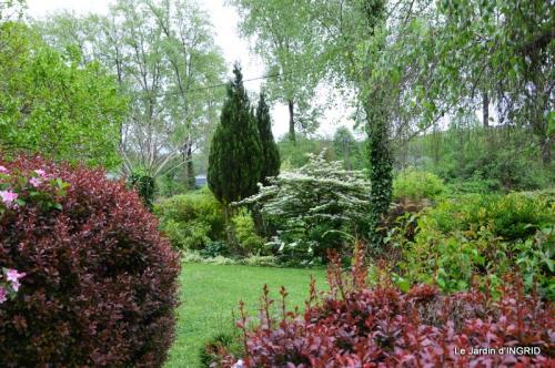 jardin avril 057.JPG