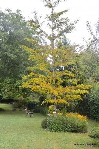 Ines,jardin,lagestromia,brocante Lalinde 047.JPG