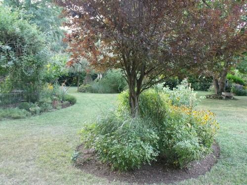 jardin,Arya,voiture,kois,nicky 007.JPG