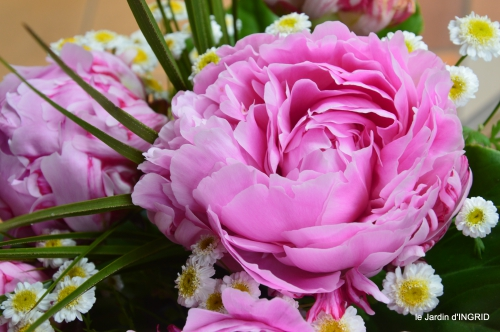 jardin pluie,Inès,Bébés cygnes,bouquet,canal 003.JPG