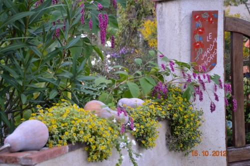 citrouilles,jardin,Combarel 044.JPG