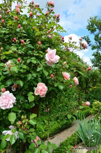 fête de la fraise Vergt,roses jardin 167.JPG