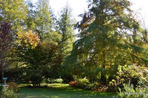 Nicky et Arya,jardin automne 023.JPG