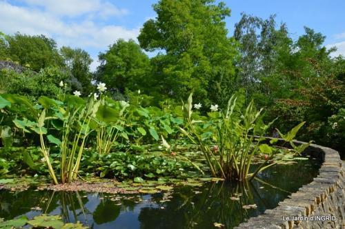 les jardins d'eau de Carsac 039.JPG