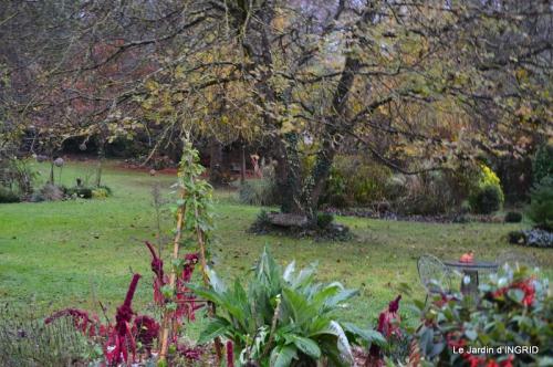 kakis,dernières fleurs,pt jardin,Julie,bassin 093.JPG