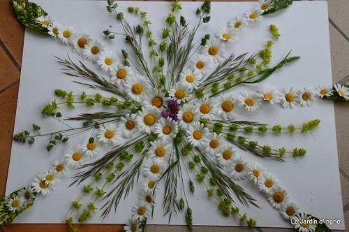 fleurs Beaumont,bouquet,tableau,serre,plants 042.JPG