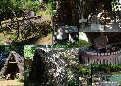 2016-07-16 lantanas,pêcheurs,roque st Christophe,cabanes de Breuil,cygnes,p4.jpg