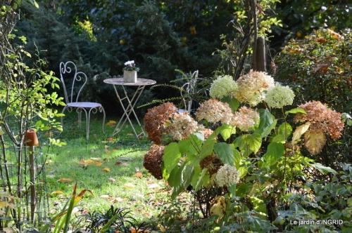citrouille fleurie,décos jardin,automne 080.JPG