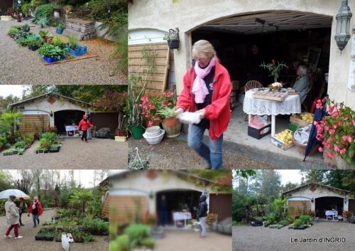 2015-10-20 vide jardin,citrouilles,derriere cabane,papillon.jpg